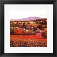 Poppy Pastures II Framed Print