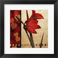 Framed Amaryllis Red Damasque