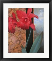 Framed Lily Red/Teal Damasque