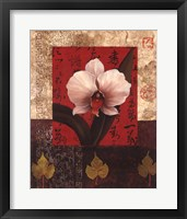 Framed White Chinese Orchid