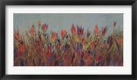Framed Summer Colors