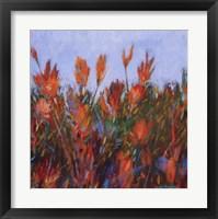 Framed Color Fields Ii