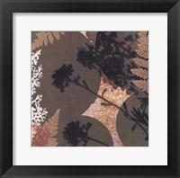 Framed Botanica 3