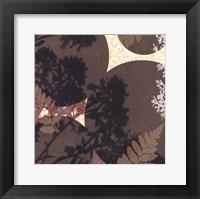 Framed Botanica 4
