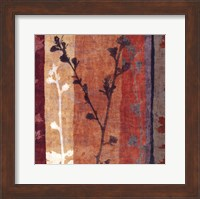 Framed Botanica 6
