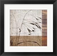 Framed Botanica 7