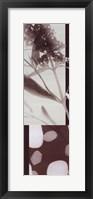 Botanica 9 Framed Print