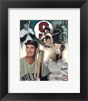 Framed Ted Williams - Legends Of The Game Composite