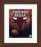 Framed Bulls - 2006 Logo