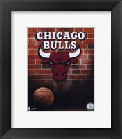 Framed Bulls - 2006 Logo