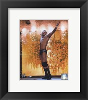 Framed Randy Orton - #366