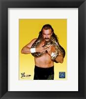 "Framed Jake ""The Snake"" Roberts - #352"