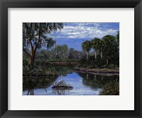 Framed Florida Wetlands