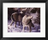 Framed Winter Wolves