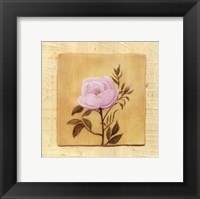 Framed Pink Flower