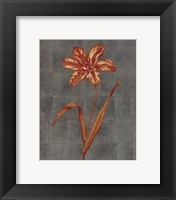 Framed Orange Flower - full bloom