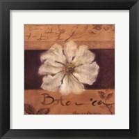 Framed White Flower (brown)