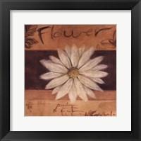 Framed White Flower - words