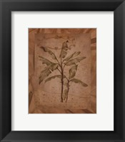 Framed Leaves - brown