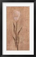 Framed White Cala Lily
