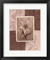 Framed Cream Flower