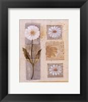 Framed White Flower Montage