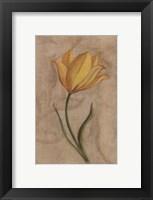 Framed Yellow Flower