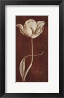 Framed White Tulip N 36