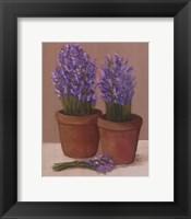 Framed Purple Flowers In Pots