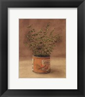 Framed Plant In Orange Can