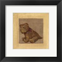 Framed Brown Dog With Red Scar