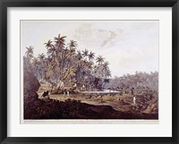 Framed View Near Point De Galle, Ceylon