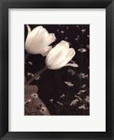 Framed Glowing Tulip II