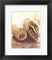 Seashore Achatina Framed Print