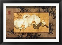 Framed Bamboo Orchids II
