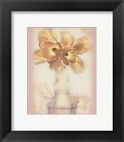 Lovely Tulip Framed Print