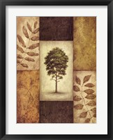Framed North American Pine