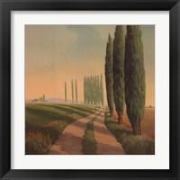 Framed Tuscan Path III