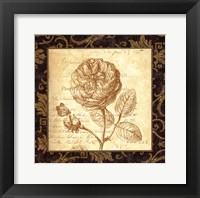 Framed Rose - with a border