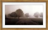 Framed Silent Traveler