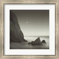 Framed Shark Tooth Cliff