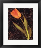 Framed Tulip Manuscript II