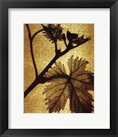 Framed Golden Time II