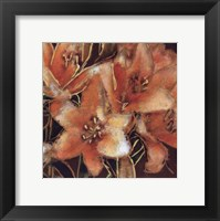 Framed Apricot Dreams I