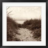 Dune Path Framed Print