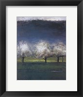 Framed Blossoming Trees