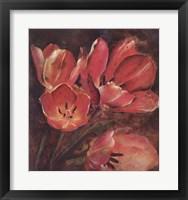Framed Tulip Two