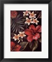 Framed Tropica One