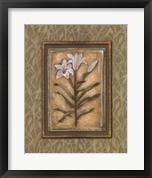 Peaceful Flowers II Framed Print