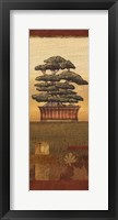 Bonsai II - Mini Framed Print